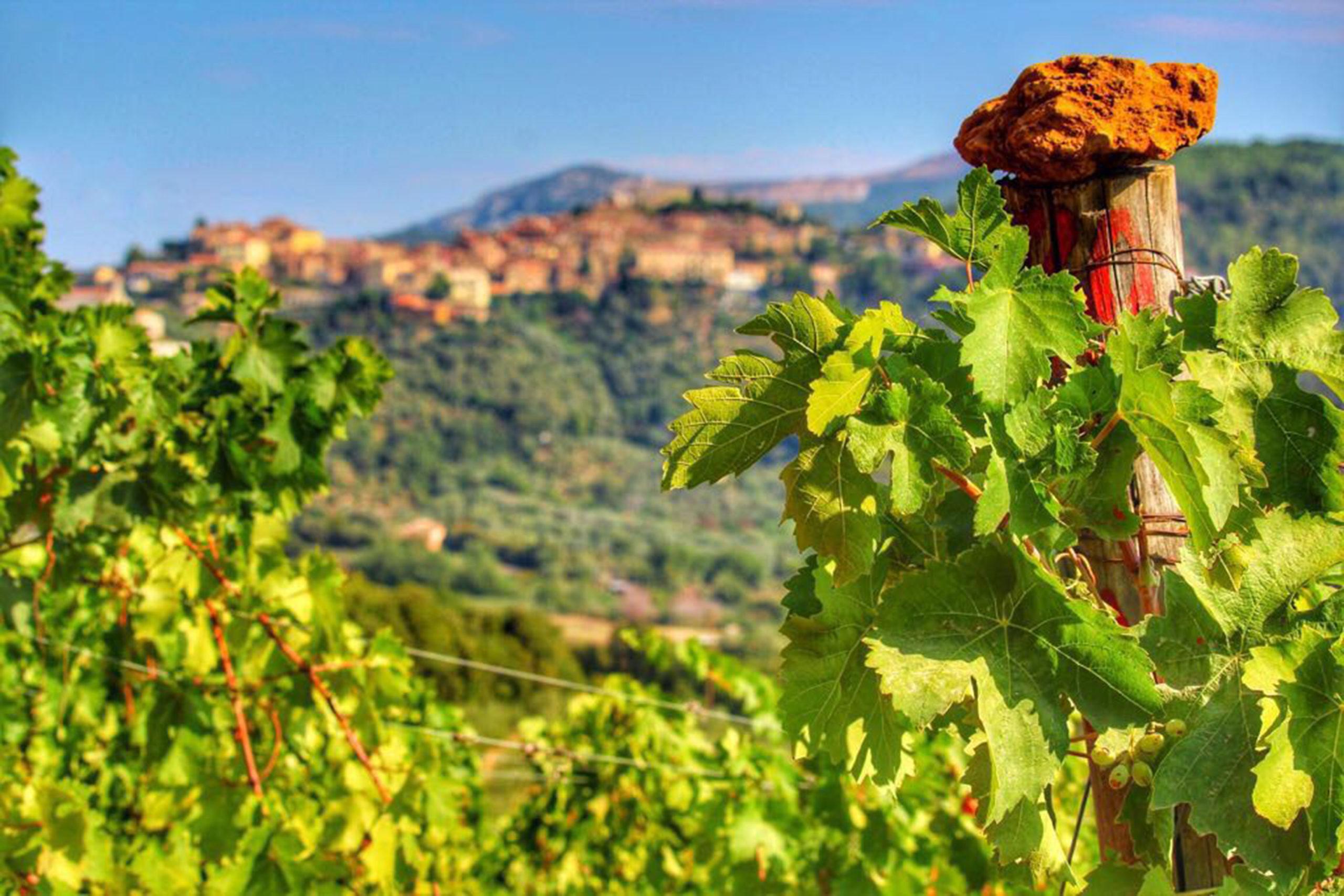 Offerte Ottobre Toscana - Salvapiano