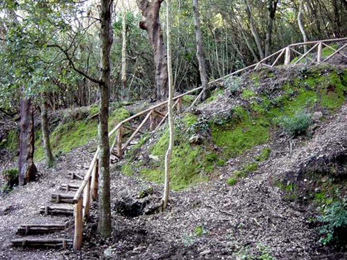 Parco di Montioni - Salvapiano