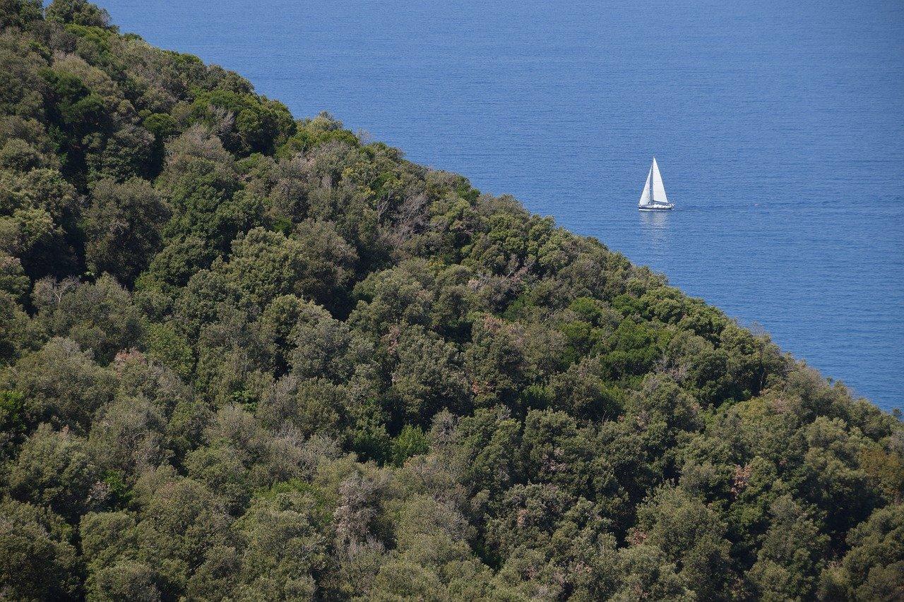 Escursioni in Barca Toscana Costa degli Etruschi - Salvapiano